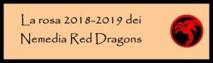 Nemedia rosa 2018-2019